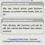 losungen_2009-31-10_172802